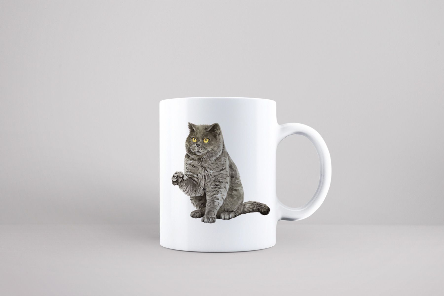 Bílý keramický hrnek s kočkouBritská krátkosrstá kočka v Brně