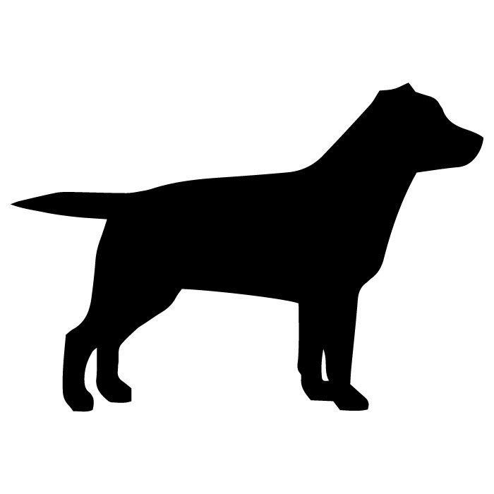Originální samolepka na auto s psím motivem - Labradorský retrívr