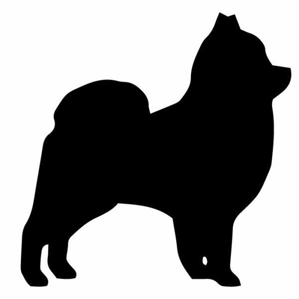 Samolepka na auto Pomeranian