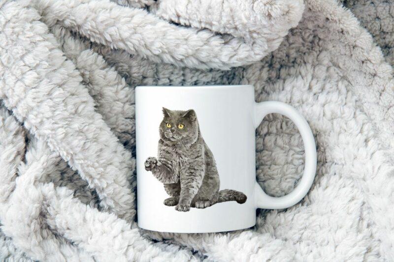 Hrnek s kočkou Britská krátkosrstá kočka