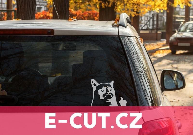 Kvalitní samolepka Grumpy Cat Fuck Off na auto